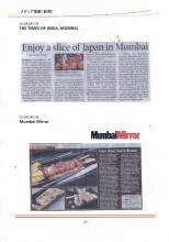 THE-TIMES-OF-INDIA-@INDIA-15-Mar-2013.jpg